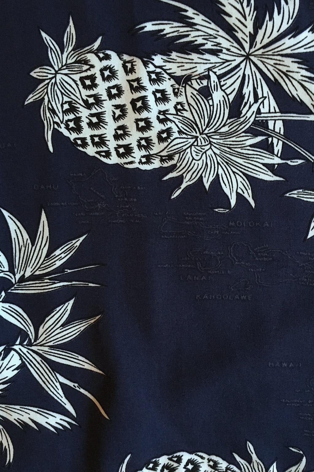 Two Palms Hawaiian Shirt Pineapple Map Print